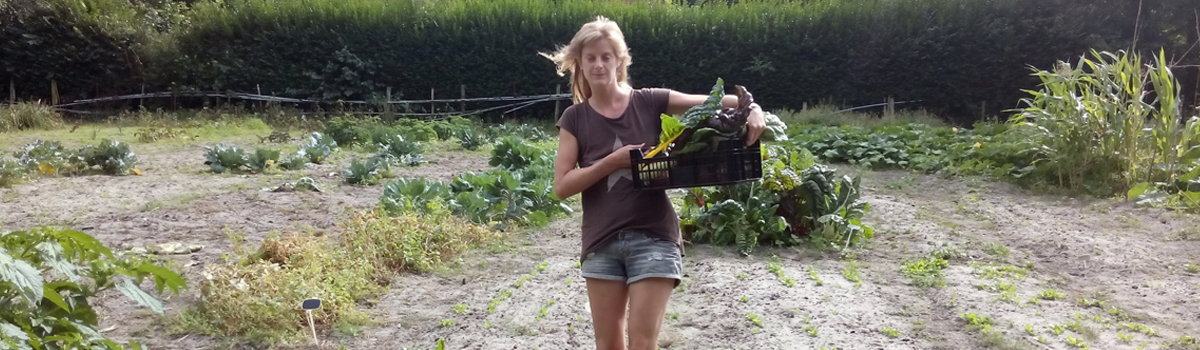 Meisje met net geoogste groenten in een mand op haar zij dragend op het land van Koelemij